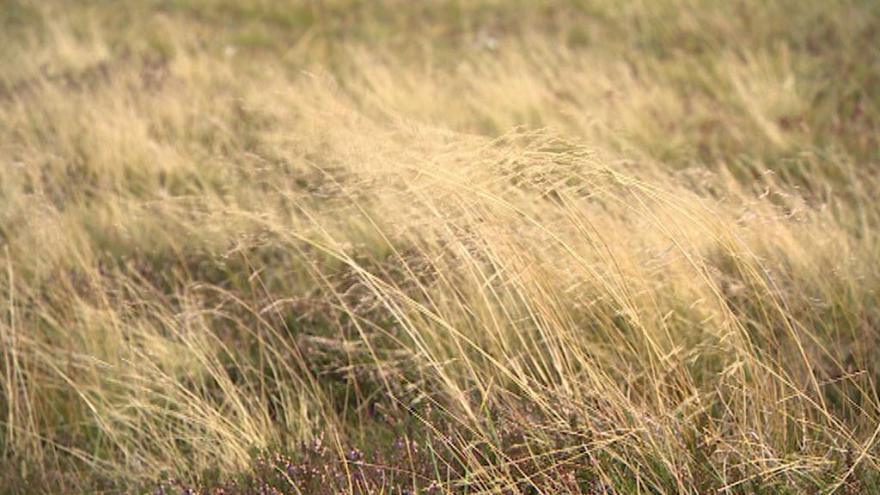 Video Meteoroložka: Nejsilněji fouká na hřebenech hor
