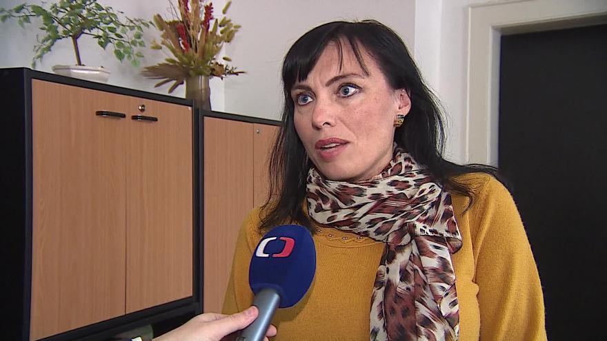 Video Klára Liptáková (KDU-ČSL) hovoří o situaci v koalici