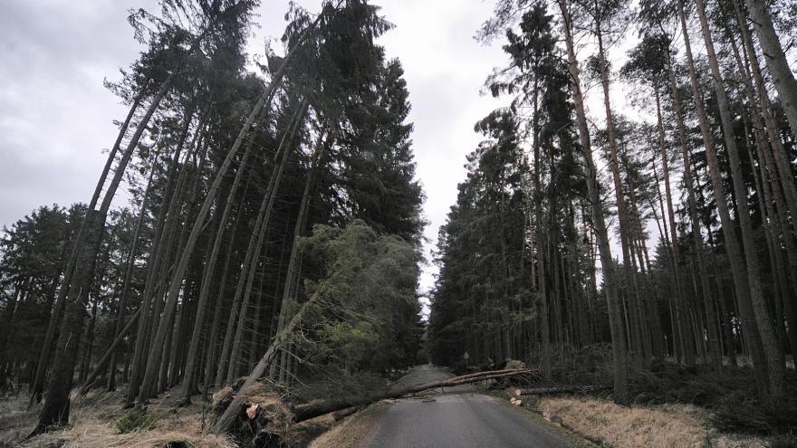 Video Události v regionech: Vítr zasáhl celé Česko, shazoval stromy i střechy