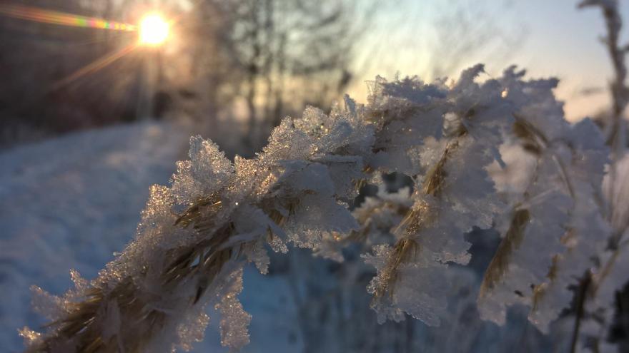 Video Meteorolog ČT Piskala: Na Rokytské slati spadly teploty k minus 35 stupňům