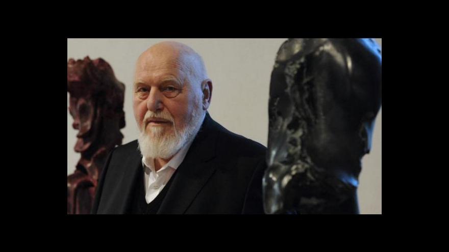 Video Jan Koblasa vystavuje méně známé práce