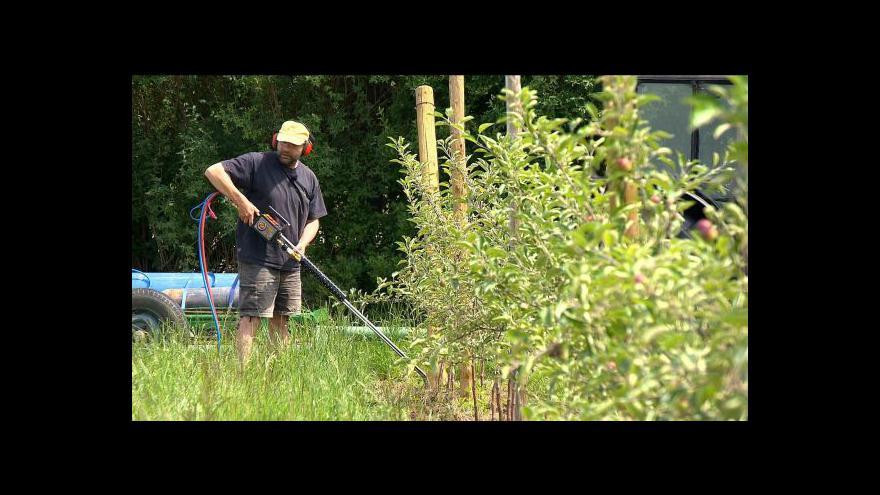 Video Ovocnáři bojují proti hlodavcům pomocí plynu