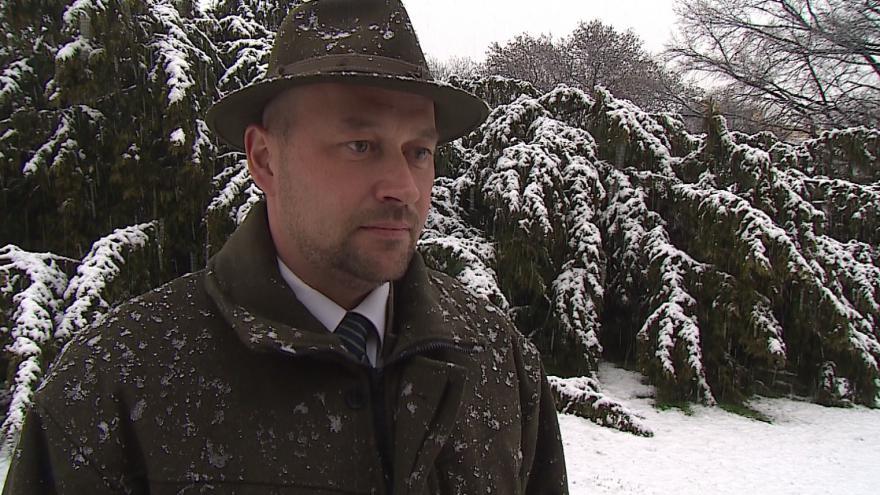 Video Jak vypadá větrolam vysvětluje Dalibor Šafařík z Lesů ČR