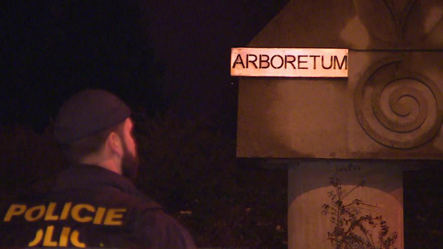 Video Bez komentáře: policisté na místě pátrali i pozdě večer