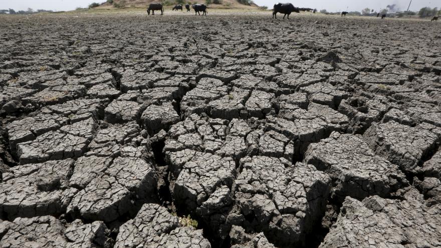 Video Přizpůsobují se změnám klimatu