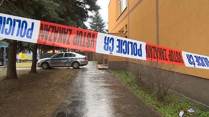 Video Policisté budou moci zadržet majiteli zbraň přímo doma