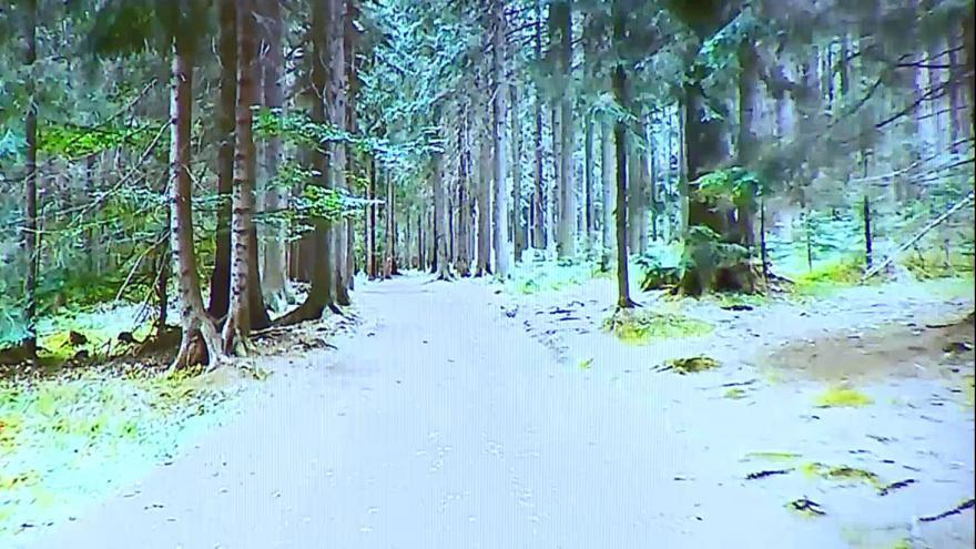 Video Projížďka lesem nebo po městě je pro seniory vítaným zpestřením