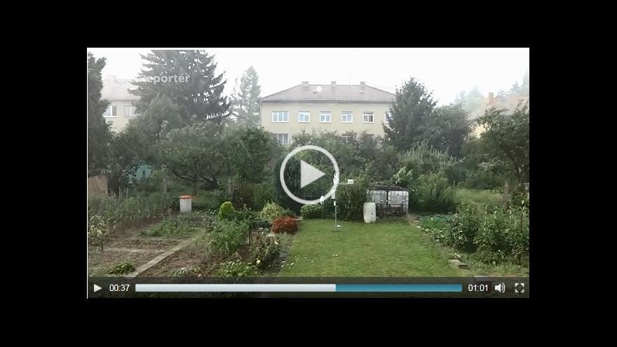Video Rousínov