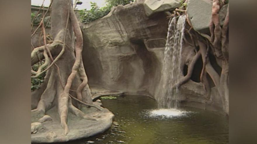 Video Otevření nového pavilonu Indonéská džungle