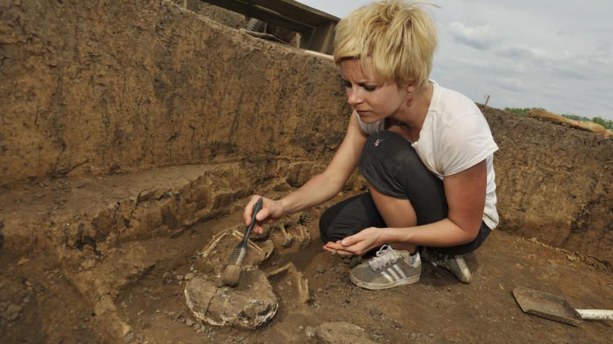 Video Archeologický průzkum