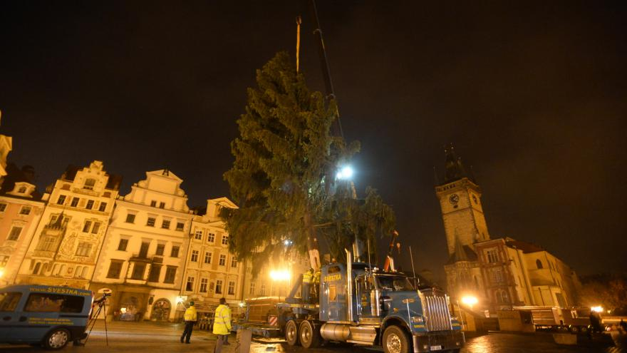 Video Praha má vánoční strom