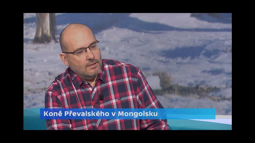 Video Bobek: Převalákům se v Gobi daří. Na jaře budou další mláďata