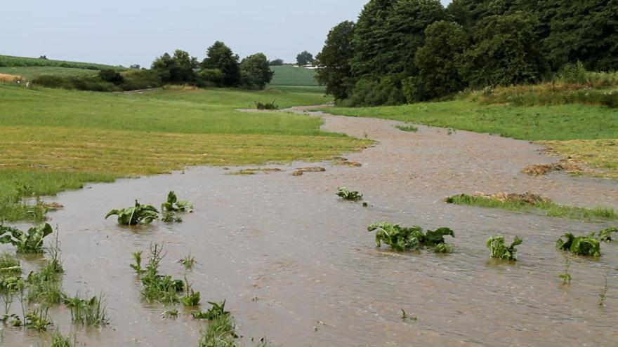 Video Voda odtékající z polí po bouřce na Olešnicku