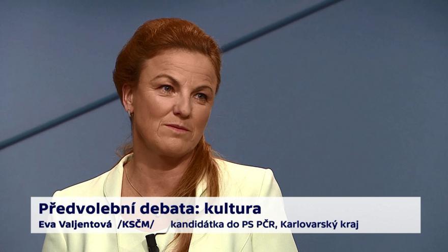 Video Valjentová a Procházka o oligarchizaci médií