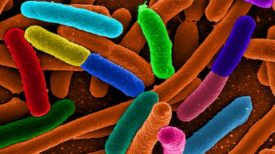 Video Stříbrem proti bakteriální rezistenci