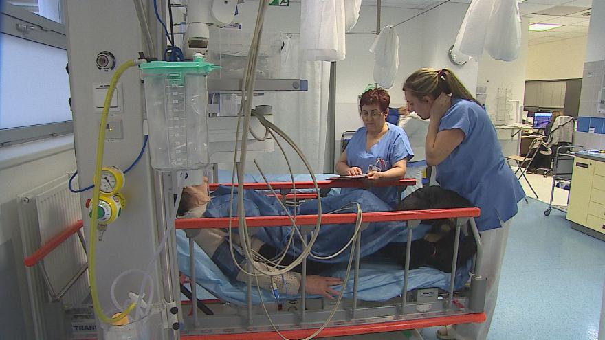 Video Urgentní příjem ve Fakultní nemocnici Brno