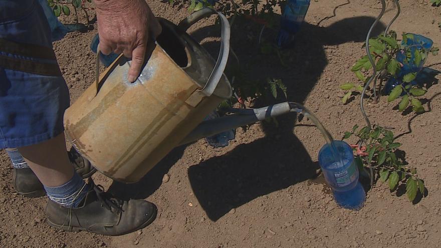 Video Zahrady se na Zlínsku nesmí zalévat pitnou vodou z veřejného vodovodu