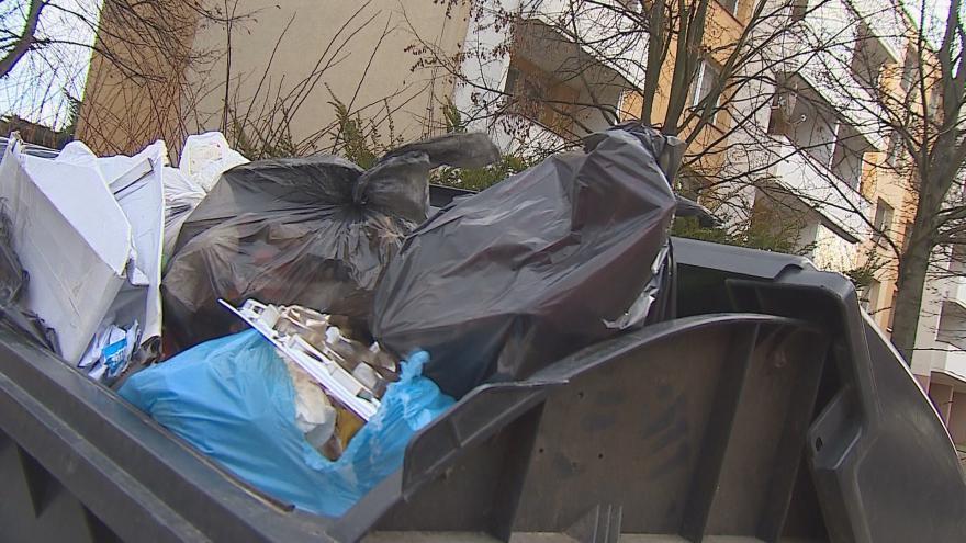 Video V Brně ročně skončí v popelnicích více než 60 tisíc tun odpadu
