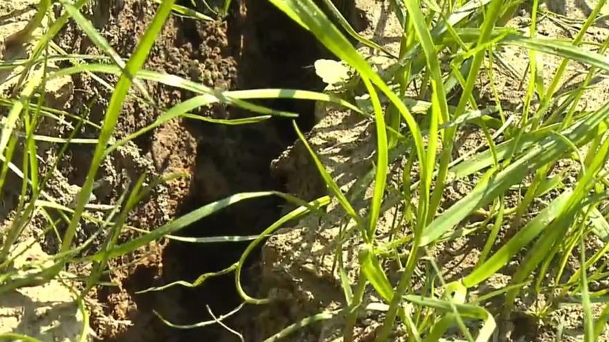 Video Eroze v Horních Bludovicích