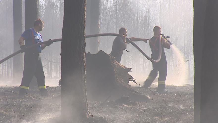 Video Na spáleniště u Bzence se dnes vrátili hasiči