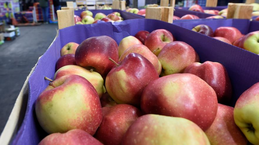 Video  Bilance ovocnářské sezony