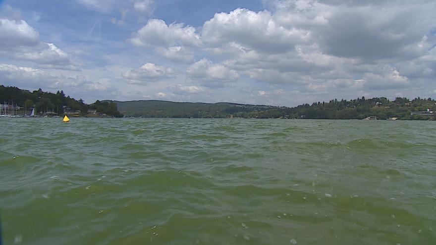 Video Voda v Brněnské přehradě zezelenala