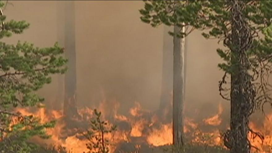 Video Švédské lesy sužují rozsáhlé požáry