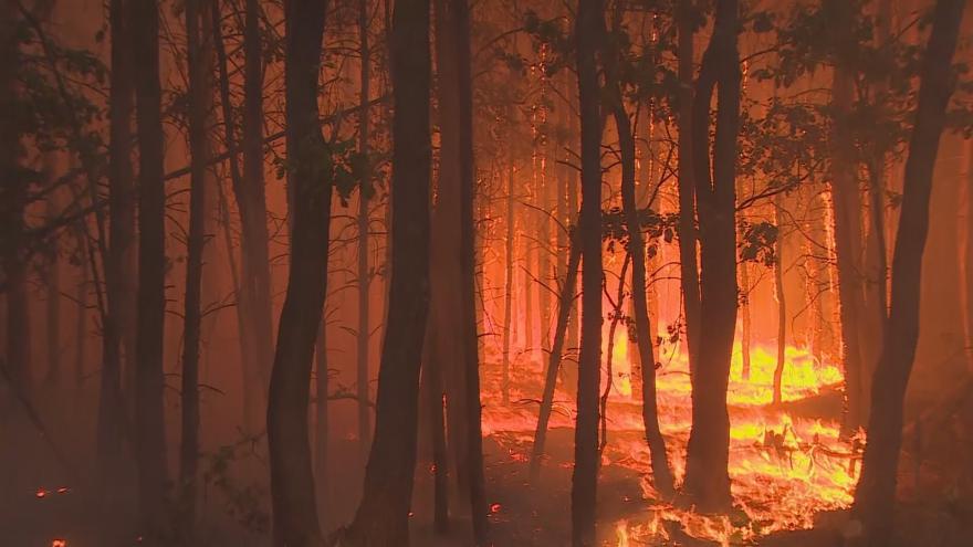 Video U Berlína hoří stovky hektarů lesa