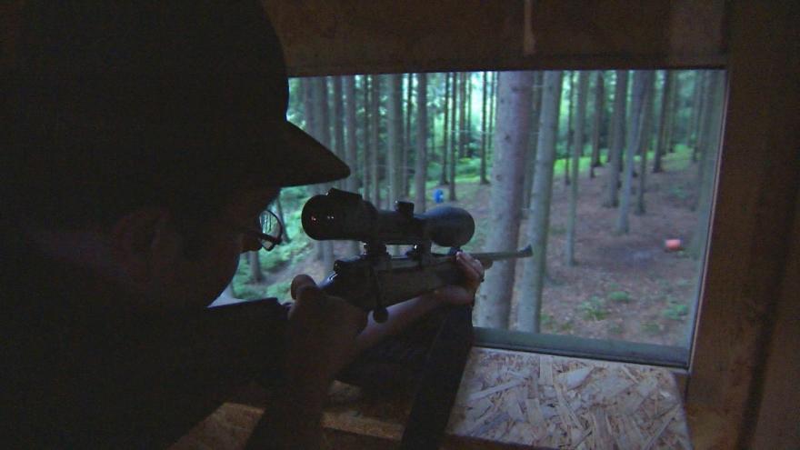 Video Medvěda se pokusí uspat veterinář narkotizační puškou