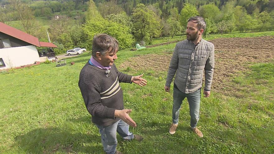 Video Události ČT: Šelma už dvakrát zaútočila na ovce, zda to byl medvěd není jisté