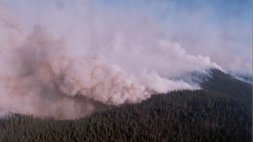 Video Na Sibiři hoří skoro milion hektarů lesa. Nikdo ho nehasí