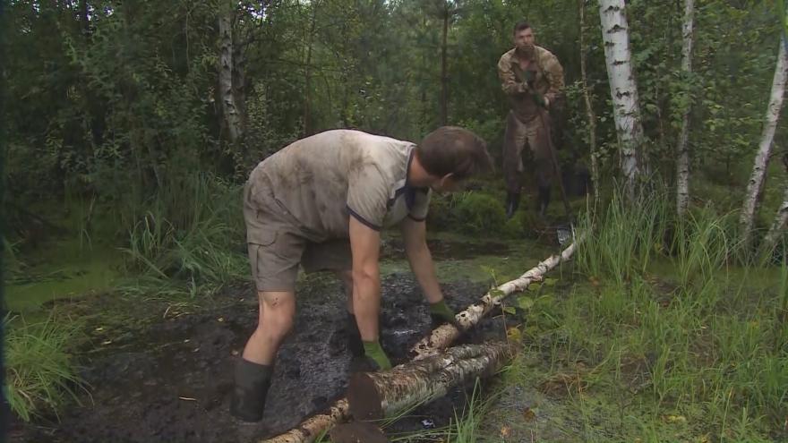 Video Začíná Týden pro divočinu na Šumavě. Dobrovolníci pomáhají s revitalizací rašelinišť