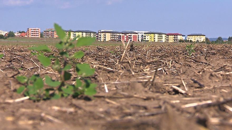 Video Na polích u Šlapanic by chtěla developerská firma postavit průmyslovou zónu