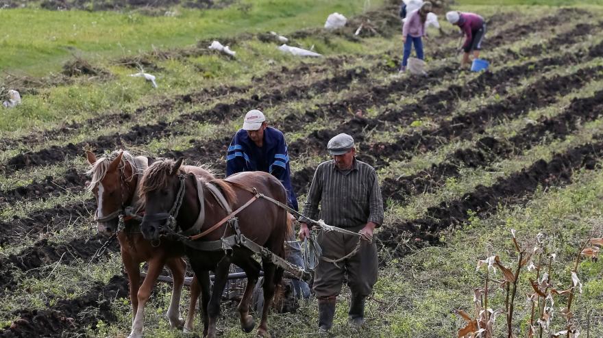 Video Horizont ČT24: Prodej zemědělské půdy na Ukrajině