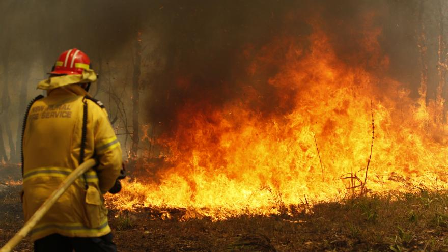 Video Hrozivá horka a velké požáry dál decimují životní prostředí v Austrálii