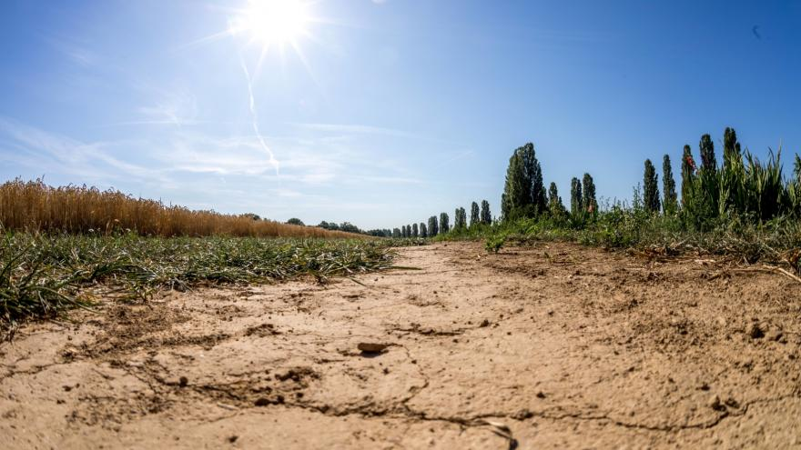 Video Vývoj sucha