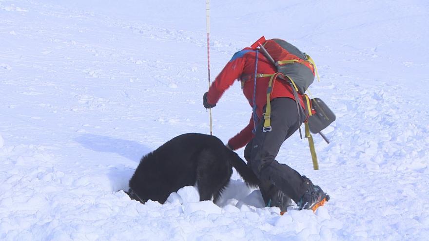 Video Horská služba cvičí vyprošťování lidí z lavin