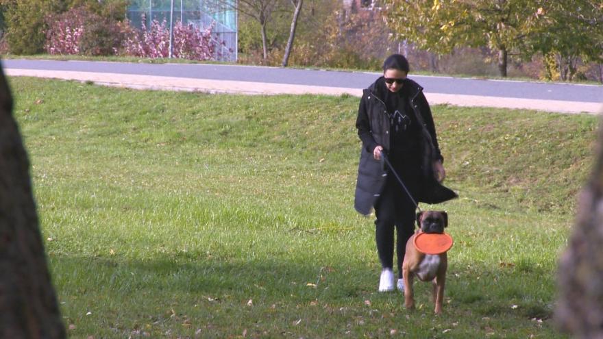 Video Pejskaři nesmí do zlínského Centrálního parku