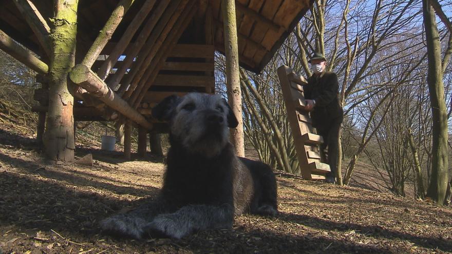 Video Péče o divou zvěř se v době karantény nezanedbává. Myslivci a rybáři mohou i přes zákaz volného pohybu do terénu