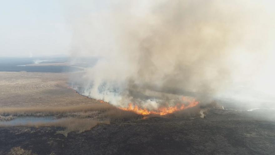 Video Silný požár ničí národní park v Polsku. Plameny pohltili už 6000 hektarů půdy
