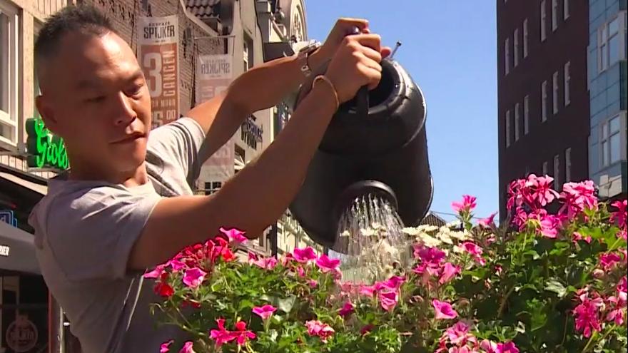 Video Události: Eindhoven se mění kvůli vedrům