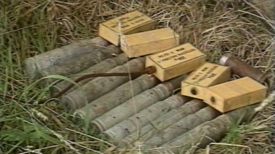 Video Houby a munice