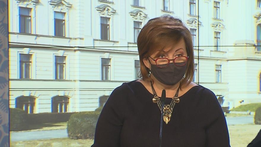 Video Brífink po jednání vlády 11. ledna