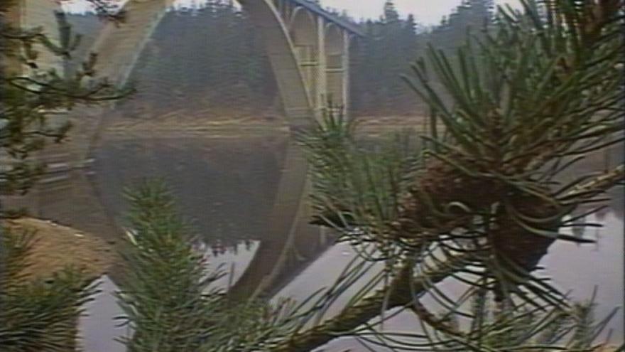 Video Znečištění Orlické přehrady