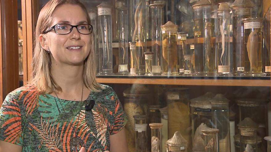 Video Rozhovor s laureátkou ceny Neuron Zuzanou Musilovou