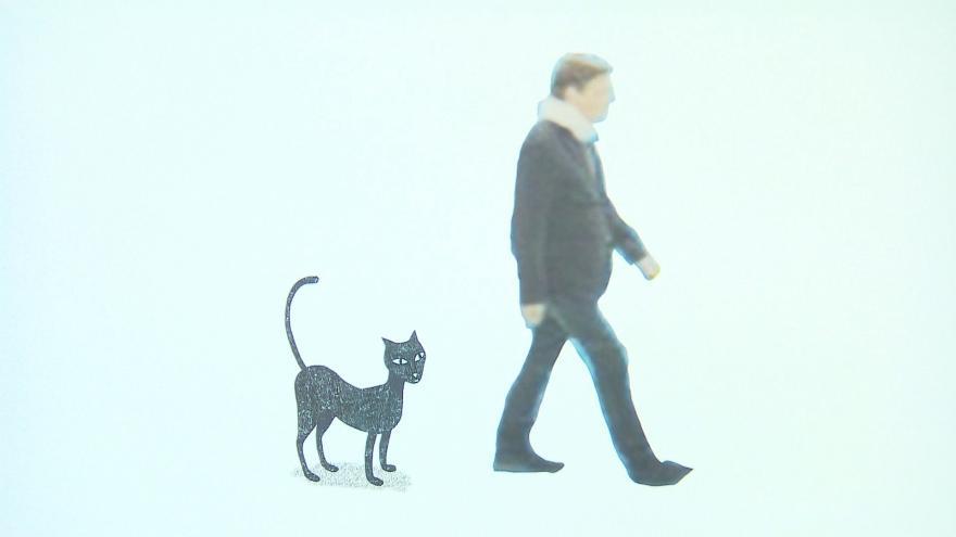 Staré černé kočička video