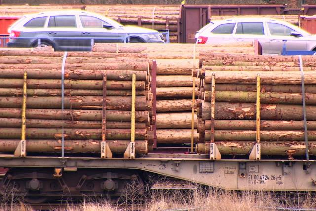 Nákladní vlaky převážejí i dřevo napadené kůrovcem