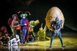 Cirque Du Soleil / OVO