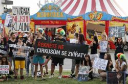 Protest proti vystupování zvířat v cirkuse