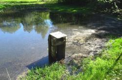 Poškozený rybník